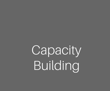 The words Capacity Building